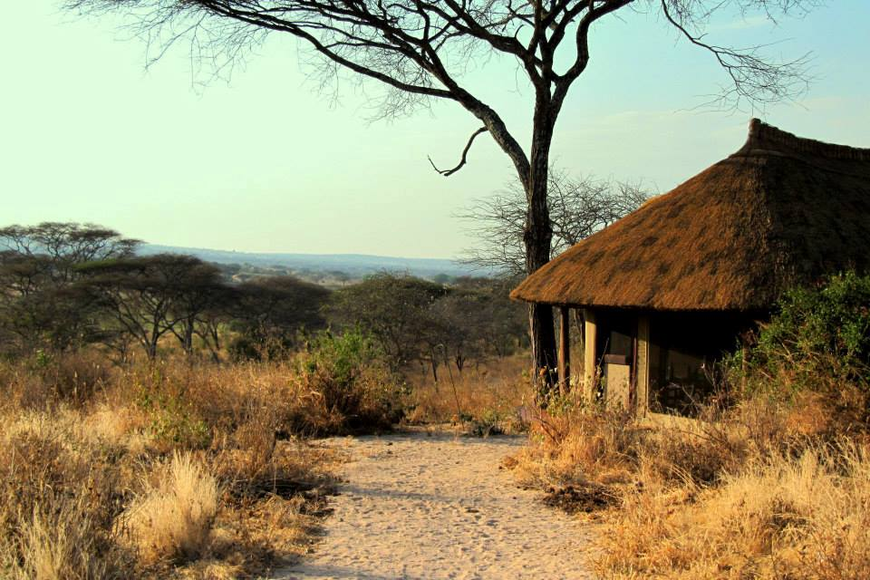 Bungalow, Little Oliver's Camp, Tarangire Nationalpark, Tansania Flitterwochen